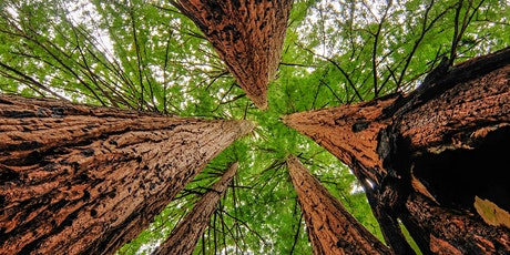 Climate Action Workshop: San Mateo County - July 11 tickets