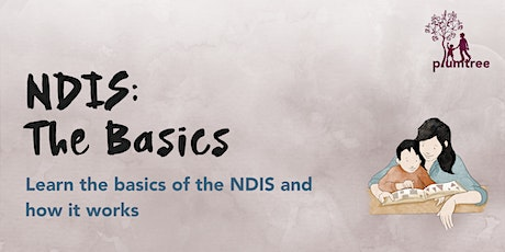 NDIS: The Basics • Online tickets