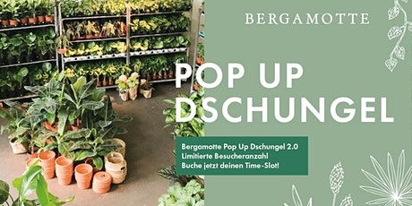 Bergamotte Pop Up Dschungel 2.0 // Hamburg Tickets