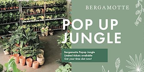 Bergamotte Pop Up Jungle // Oslo tickets