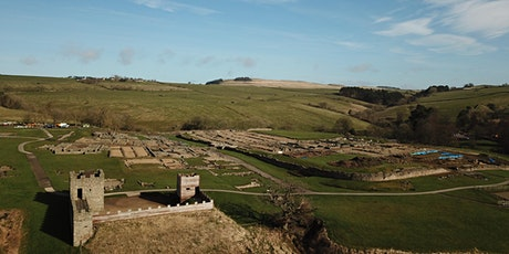 Visit Roman Vindolanda Fort & Museum tickets