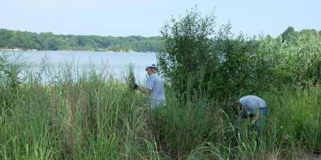Cleanup at Edith Read Wildlife Sanctuary tickets