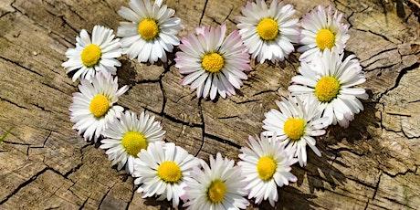 Expansion de soi-même à l'aide des plantes et des fleurs / Manon Breton billets