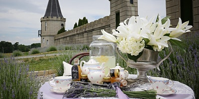 U-Pick Lavender Harvest