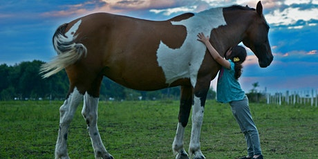 Mindful Equine Youth Summer Camp (age 8-12 yrs) tickets
