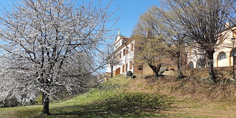 Aule Studio in Villa Binetti Montebelluna biglietti
