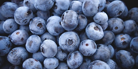 Pick Your Own Blueberries tickets