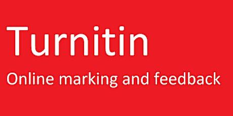 Turnitin - Online marking and feedback tickets