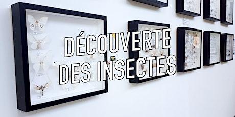Découverte des insectes / Parc de la Rivière tickets