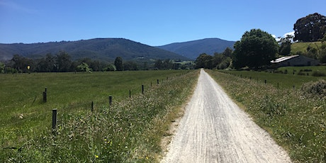 Woori Yallock to Launching Place return hike on the 6th of July, 2020 tickets