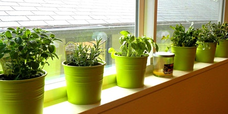 Drinks & Dirt: Herb and Container Gardening 101 tickets
