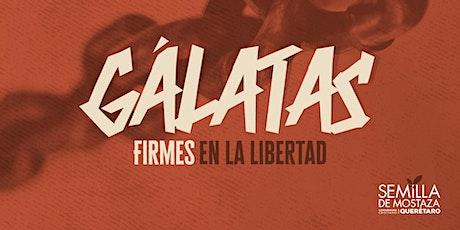 Gálatas - Semilla de Mostaza Querétaro. boletos
