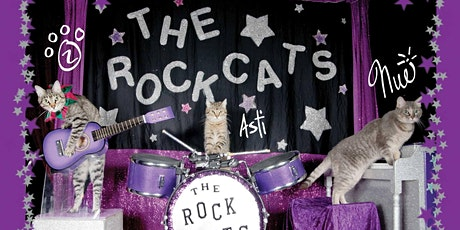 The Amazing Acro-cats Astound Arlington! tickets