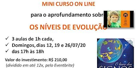 Aprofundamento sobre Níveis da Evolução - Mini Curso Online ingressos