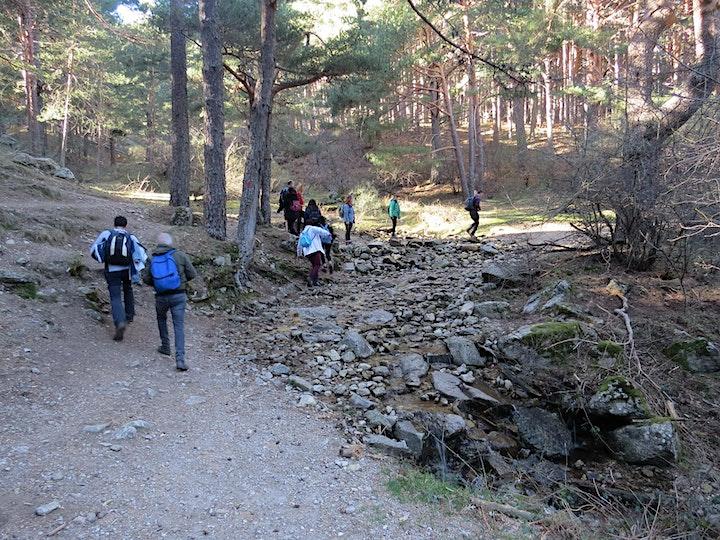 Imagen de Ruta de senderismo fácil y turismo en familia en Madrid