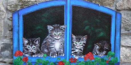Brolo: il paese dei gatti biglietti