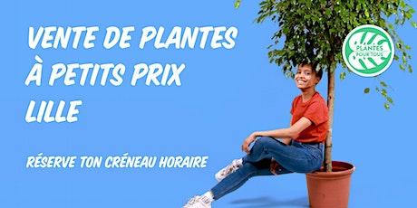 Vente de Plantes à petits prix - Lille billets
