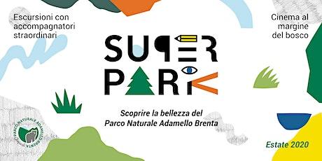SuperPark  |  CHASING ICE biglietti