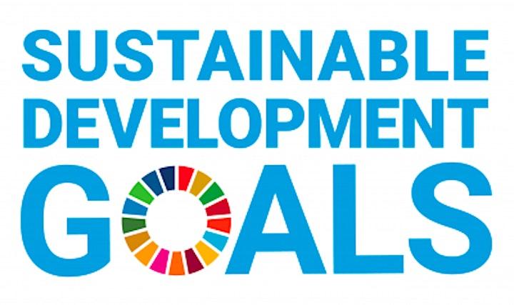GAIA GAYA Session 6: Leading Sustainability Initiatives image
