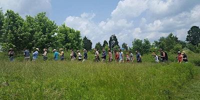 First Sunday Guided Nature Tour: Backyard Medicina