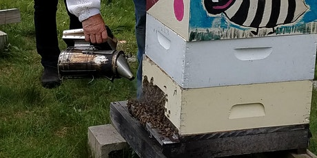 Beekeeping: Preparing Your Hive for the Coming Fall tickets