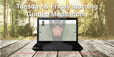 Tuesday & Friday 9AM EST Guided Meditations tickets