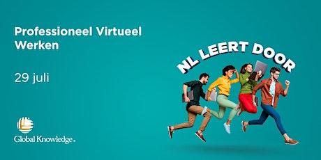 Professioneel Virtueel Werken tickets