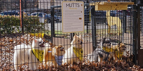 MUTTS Canine Cantina Breed Meetup - Pugs tickets