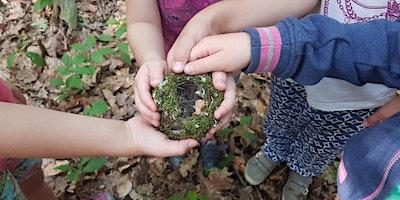 SOMMERFERIEN 2020: Natur-Erlebniswoche Natur pur!