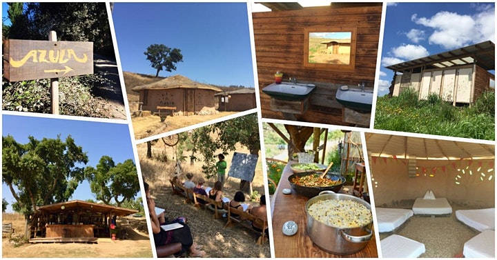 Permaculture Design Course (PDC) at Azula 8th - 24th October 2020 image