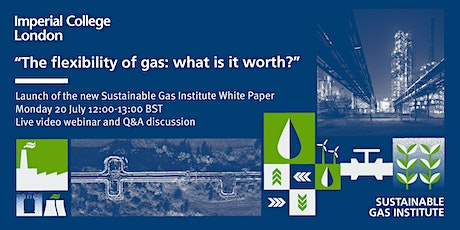 The flexibility of gas - what is it worth? tickets
