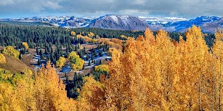 Colorado Aspens Photography Workshop tickets