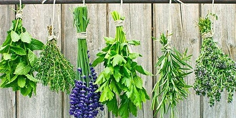 Herb Collecting and Drying Workshop tickets