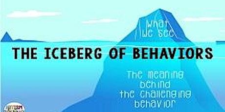 Positive Behavior Strategies: Online class tickets