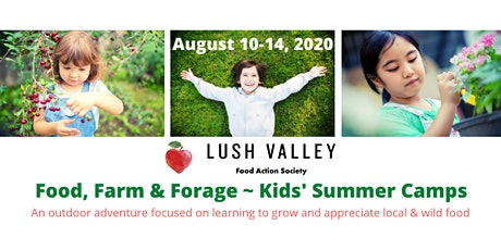 Food, Farm & Forage - Kids' Summer Camp (August) tickets