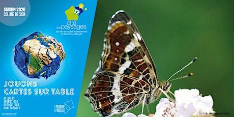 Abri à papillons billets