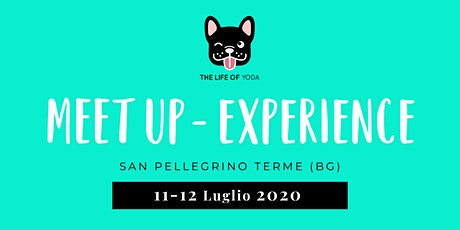 MEET UP EXPERIENCE - The Life of Yoda tickets