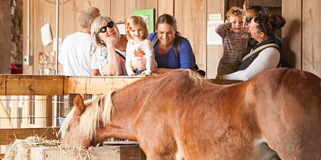 Family and Small Group Farm Tours at Gorman Heritage Farm 2020 tickets