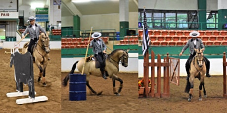 Introduction to Working Equitation clinic Hervey B tickets