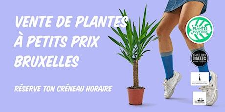Vente de Plantes à petits prix - Bruxelles billets