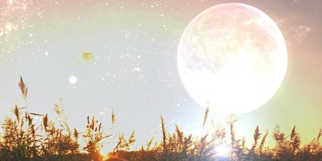 Virtual New Moon in Cancer Manifestation Ceremony & Reiki Sound Bath tickets