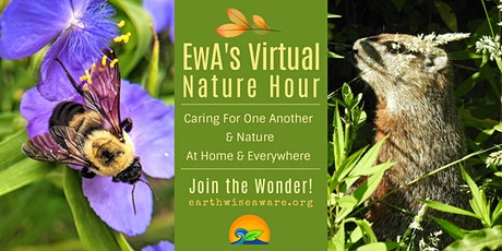 EwA's Virtual Nature Hour tickets