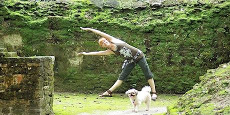 60 minutes Free Virtual Yoga with Sera Underwood — CO tickets