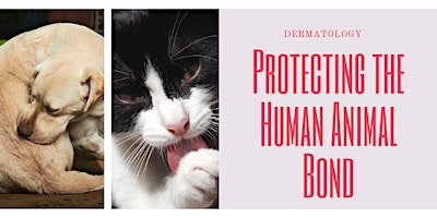 Dermatology: It's Role in the Human Animal Bond?