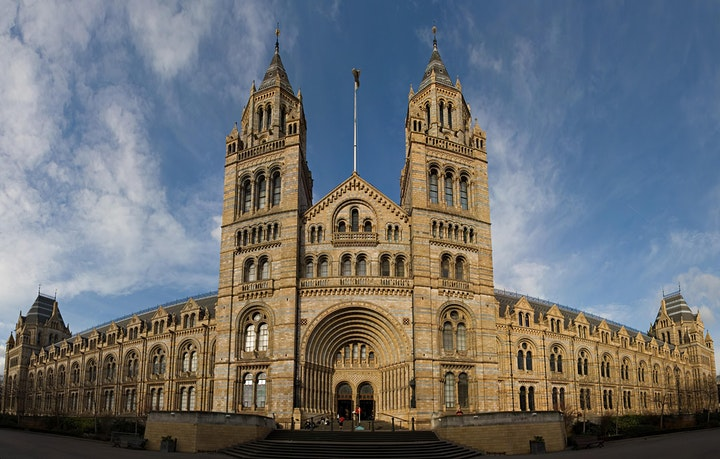 A Fossil Hunter's Virtual Tour of London's Natural History Museum image