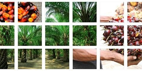 RSPO Systems & Audit Training tickets