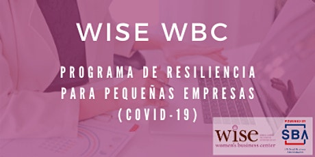 Programa De Resiliencia Para Pequeñas Empresas[Español] entradas