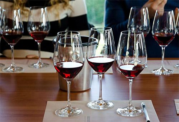 Introduction to French Wines image