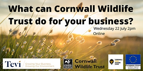 What can Cornwall Wildlife Trust do for your enterprise? tickets