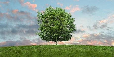 Costruire l'albero dell'occupabilità E-Factor tree biglietti